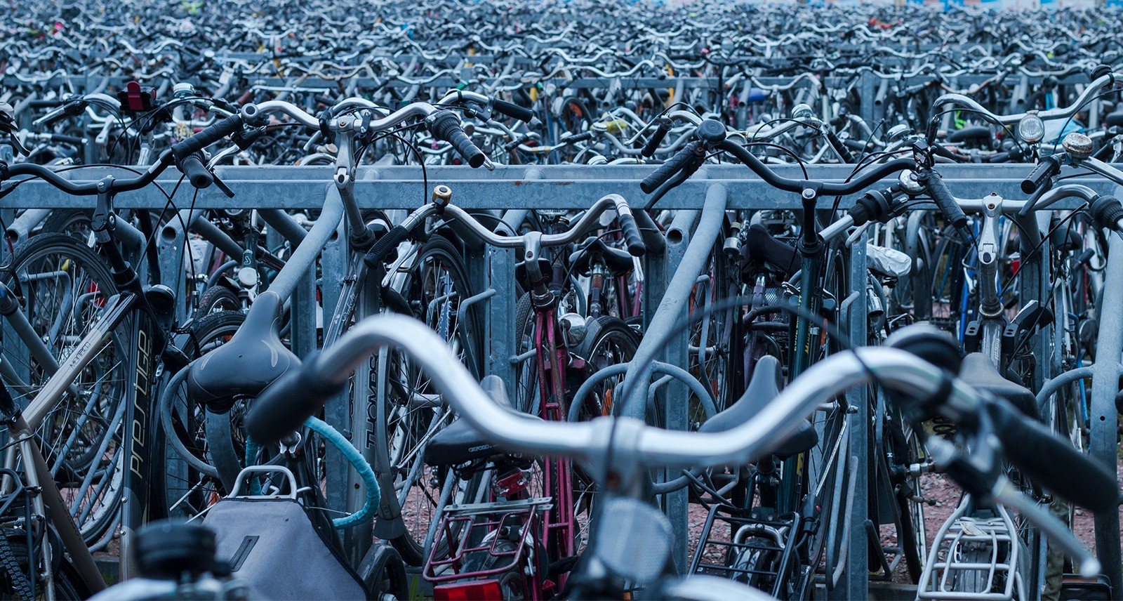 If I Could Own Only One Type of Bicycle, What Should It Be?