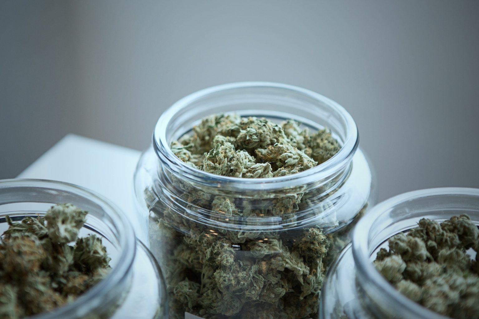 9 Important Medical Marijuana Statistics
